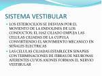 sistema vestibular5