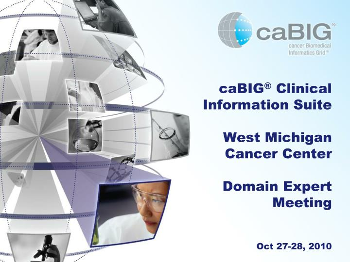 cabig clinical information suite west michigan cancer center domain expert meeting oct 27 28 2010 n.