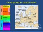 coluna geol gica e data o relativa