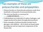 two examples of these are polysaccharides and polypeptides