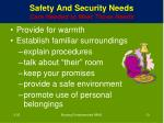 safety and security needs care needed to meet those needs