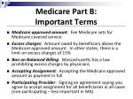 medicare part b important terms
