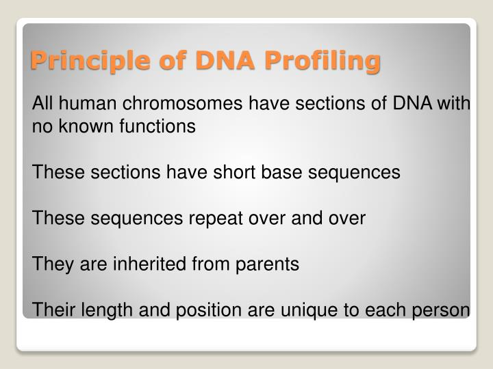 Principle of DNA Profiling
