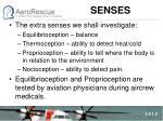 senses1