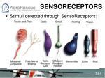 sensoreceptors