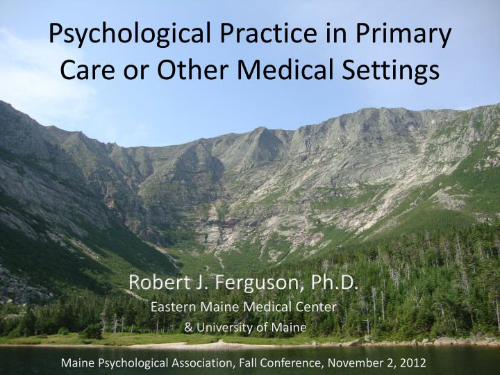 psychological practice in primary care or other medical settings n.
