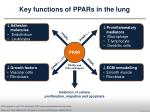 key functions of ppars in the lung