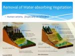 removal of water absorbing vegetation