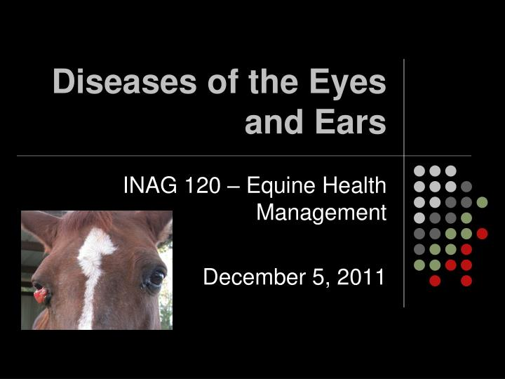 diseases of the eyes and ears n.