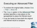 executing an advanced filter2