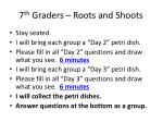 7 th graders roots and shoots