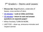7 th graders stems and leaves