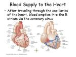 blood supply to the heart2