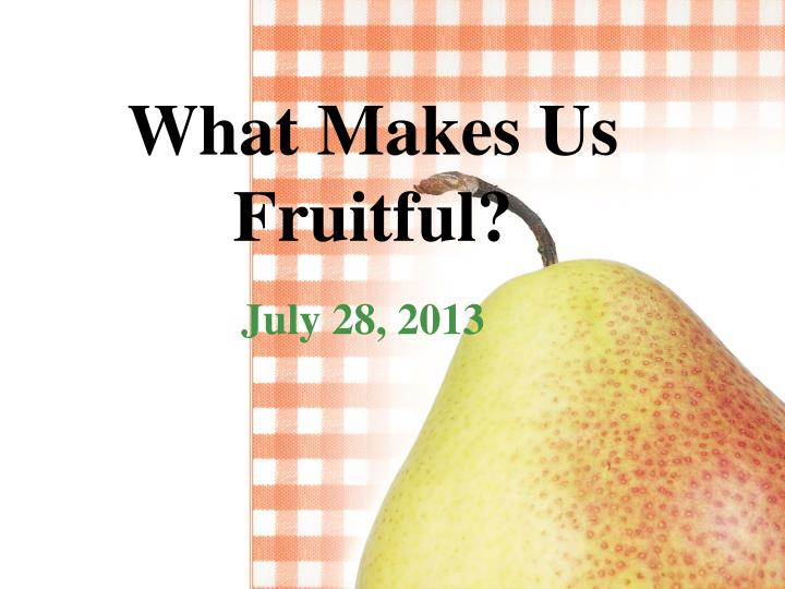 what makes us fruitful n.