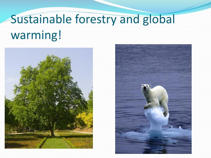 sustainable forestry and global warming n.