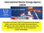 international atomic energy agency iaea
