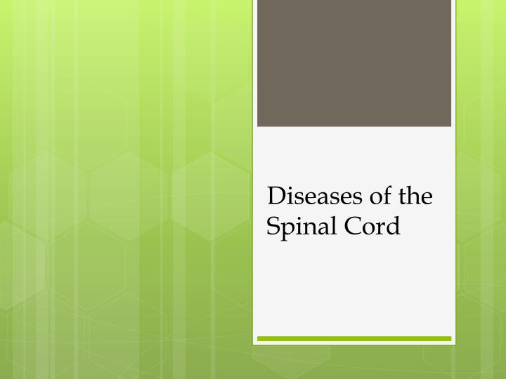 diseases of the spinal cord n.