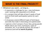 what is the final project