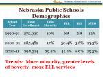 nebraska public schools demographics