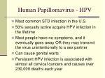 human papillomavirus hpv