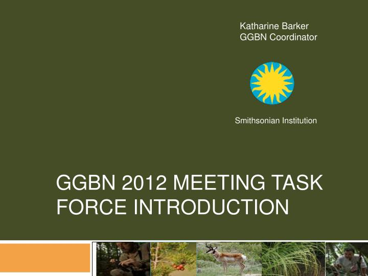 ggbn 2012 meeting task force introduction n.