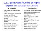 2 272 genes were found to be highly express in t caerulescens than a thaliana