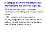a complex network of homeostatic mechanisms has evolved in plants