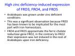high zinc deficiency induced expression of frd3 fro4 and fro5