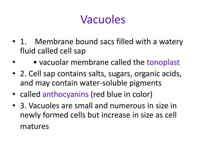 membrane bound fluid filled sac