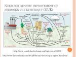 need for genetic improvement of nitrogen use efficiency nue