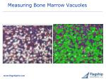 measuring bone marrow vacuoles