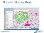 measuring pulmonary alveoli
