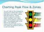 charting peak flow zones
