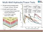 multi well hydraulic tracer tests