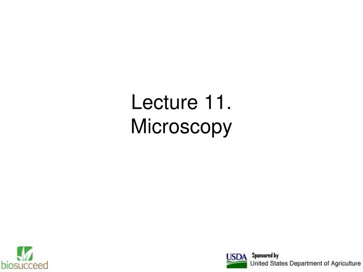 lecture 11 microscopy n.