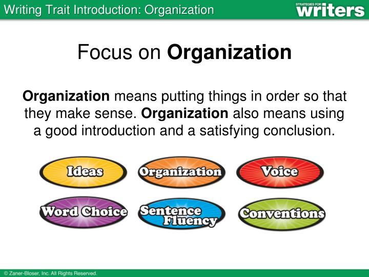 Focus on organization