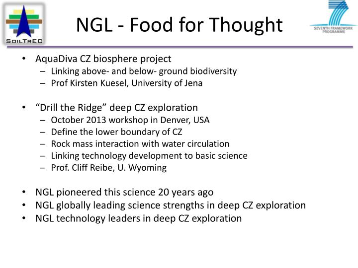 NGL - Food for Thought