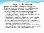 large scale farming