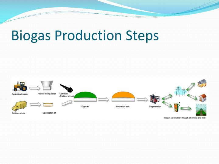 Biogas Production Steps