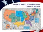 federal district courts and circuit courts of appeals