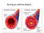 during an asthma attack
