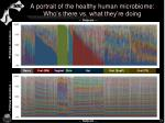 a portrait of the healthy human microbiome who s there vs what they re doing