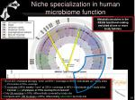 niche specialization in human microbiome function