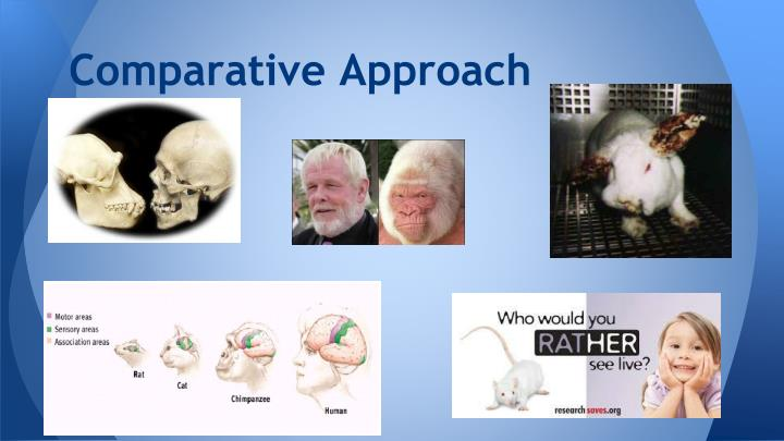 Comparative Approach