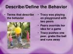 describe define the behavior1