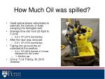 how much oil was spilled