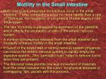 motility in the small intestine