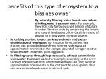 benefits of this type of ecosystem to a bissines owner