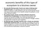 economic benefits of this type of ecosystem to a bissines owner
