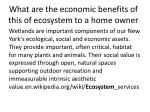 what are the economic benefits of this of ecosystem to a home owner
